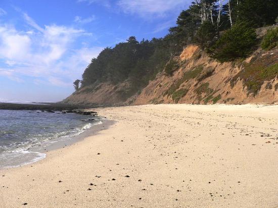 Seal Cove Inn Beach