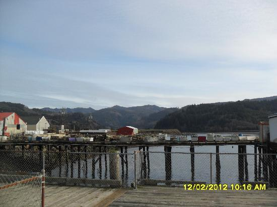 Harborview Inn & RV Park: a view from the crabbing dock