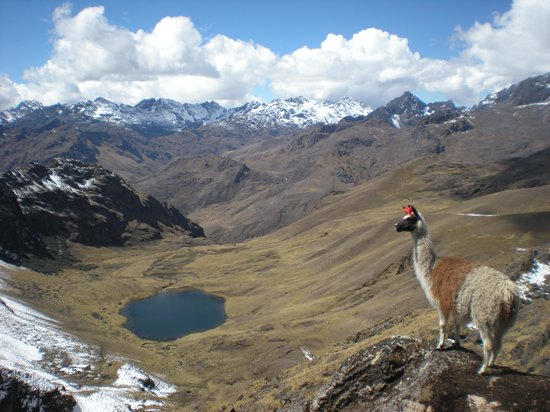 Sacred Valley, Peru: lares willcac'asa pass 4200 masl