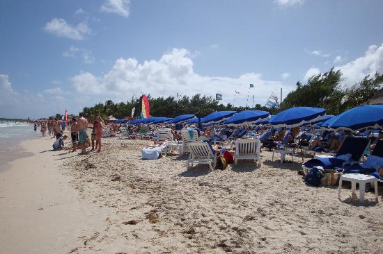 Bliss: beach rendezvous excursion