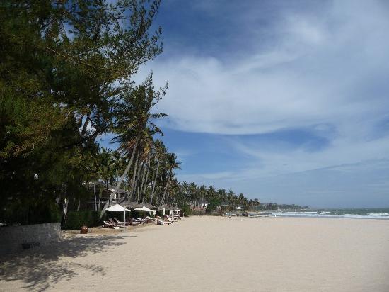 Phu Hai Resort: Strand