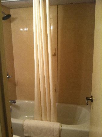 Regency Suites: View inside shower