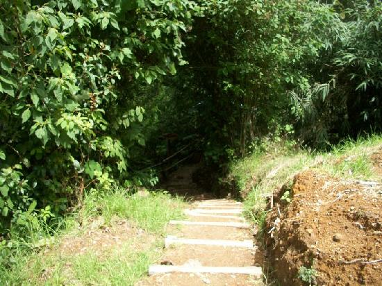 Fuentes Georginas: begin the trail