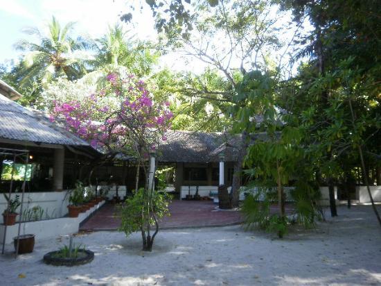 Asdu Sun Island: bar ristorante