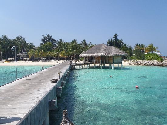 Vivanta by Taj Coral Reef Maldives: First Impression