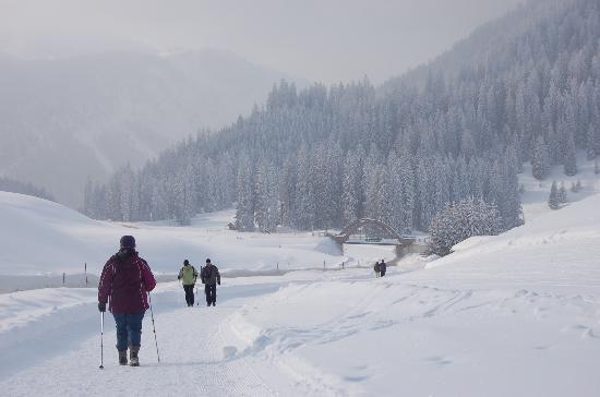 Alpenperle: Gut präparierte Winterwanderwege