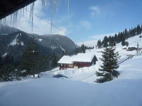 Alpenperle: Aussicht aus der Ferienwohnung