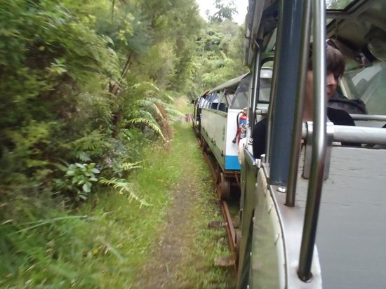 Titirangi, นิวซีแลนด์: Riding through Waitakere rainforest