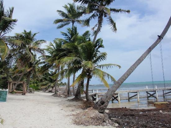 Ak'bol Yoga Retreat & Eco-Resort: Chairs in the water along the beach