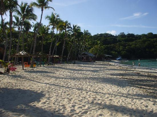 Virgin Islands Campground : Incredible honeymoon beach