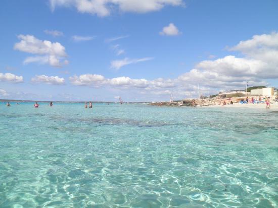 Hotel Riu La Mola : La splendida spiaggia