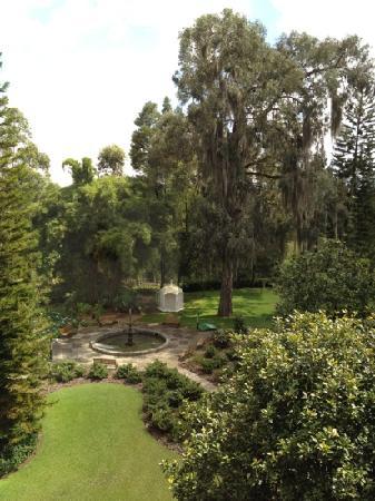 Movich Las Lomas Hotel: jardin