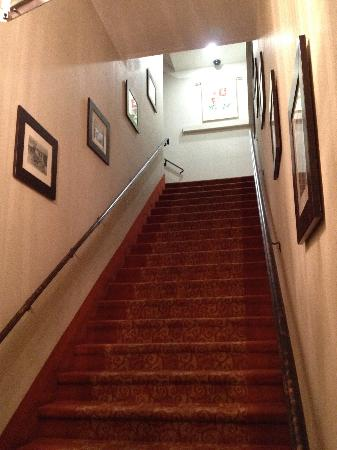 Hotel Brandwood : Front Entrance stairs
