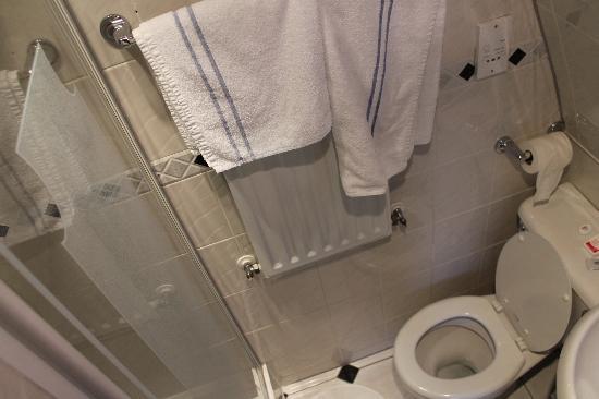 Adria Hotel: Bathroom (small, but clean)