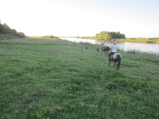 Baradero, Argentina: Horseback Riding along the rio
