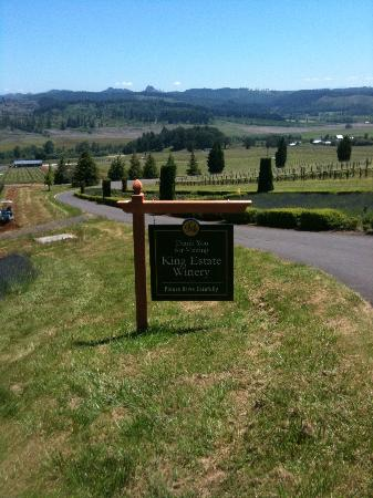 King Estate Winery: King Estate on a sunny day
