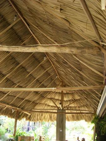 Jungle Huts Resort 이미지