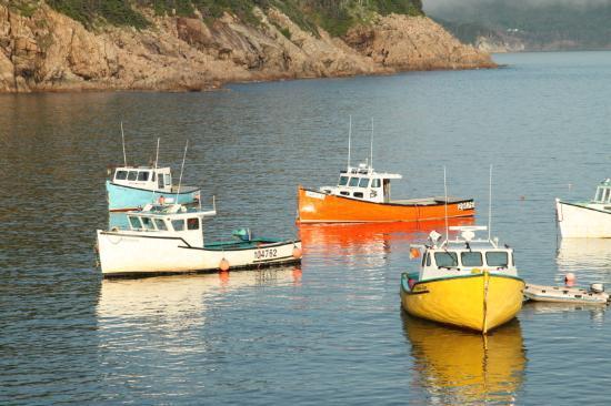 Two Tittle B&B: bateaux