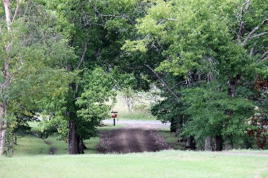 Cedar Glen Farmstay: The gateway to relaxation