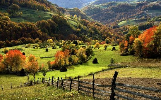 Villa Natural Wood: .........