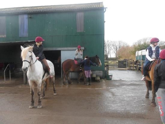 Anglesey Riding Centre : Mounting the horse