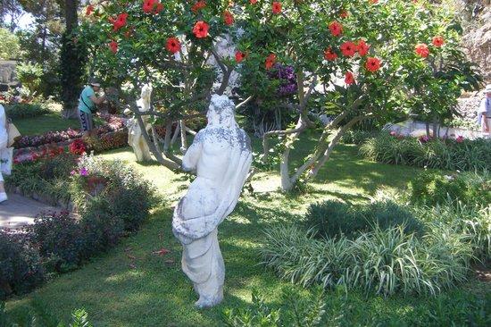 奥古斯都花园