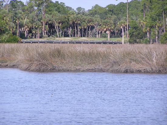 Hammock Dunes Creek Course: The 15th from the tidal marsh