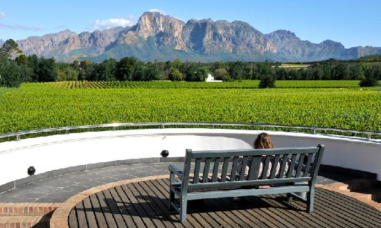 Vrede en Lust Winery: View from the Plaza