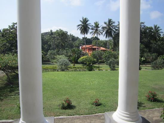 Hotel Yapahuwa Paradise : Le jardin