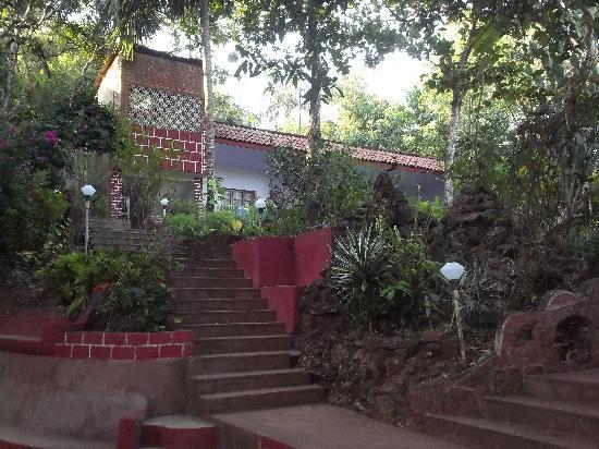 Hotel Astoria: view over gardens