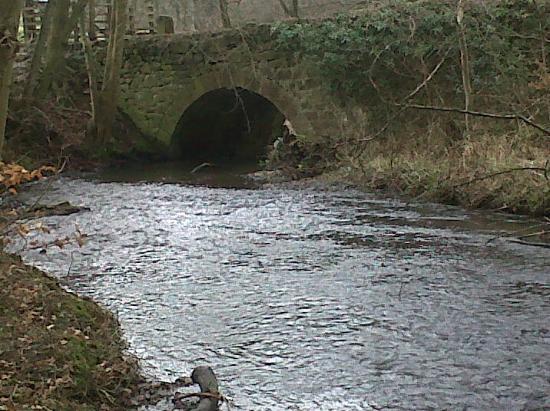 Bryn Tirion Cottage: Little hidden places