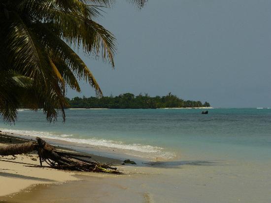 Hotel Eco-Lodge Ravoraha : L'ïle aux nattes vu de la plage du Ravoraha