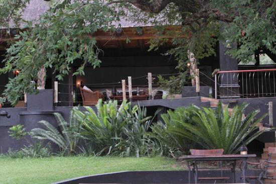 Lion Sands - Tinga Lodge: the lodge