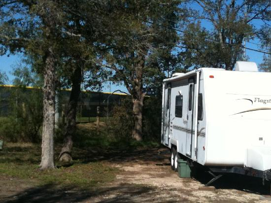 The Oaks RV Park: Deep & wide sites can accomodate any size RV