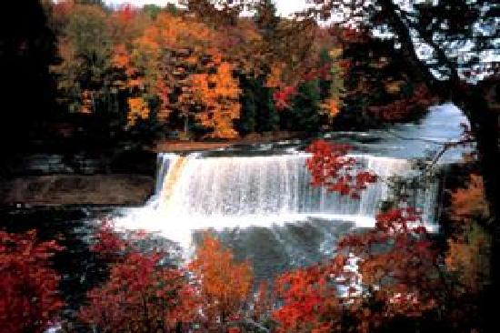 Sault Ste. Marie, MI: Tahquamenon Waterfall