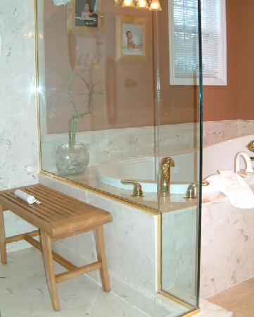 Treasure Island Bed & Breakfast: Shower and Whirlpool Tub