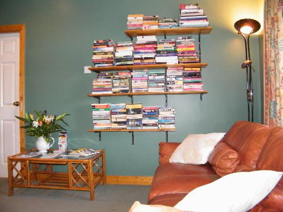 Almanii Bed & Breakfast: Reading Area