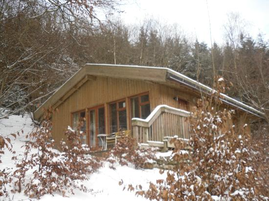 Dalby Forest Log Cabins Picture