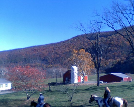 Riverview Farms and Stables