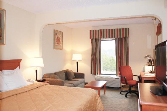 Quality Suites Altavista - Lynchburg South: King Size Room