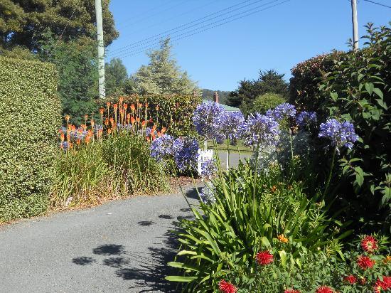 Donalea Bed & Breakfast: Beautiful Gardens