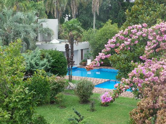 Hotel Villa Victoria de Tigre: View to pool from our terrace