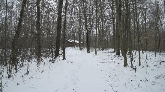 Cabins At Hickory Ridge: Our winter hike