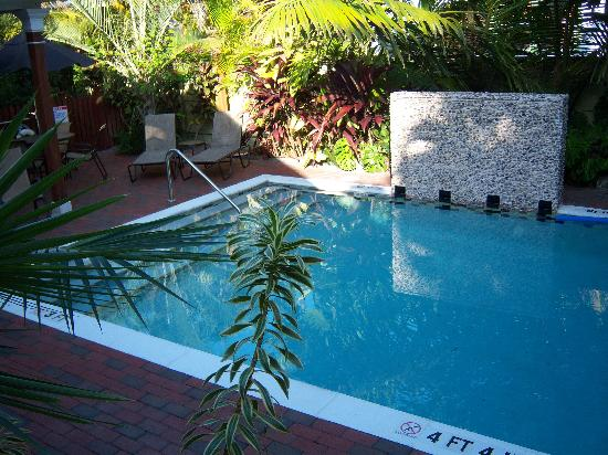 Travelers Palm Inn: The pool from the back porch of Chalet D'Amour