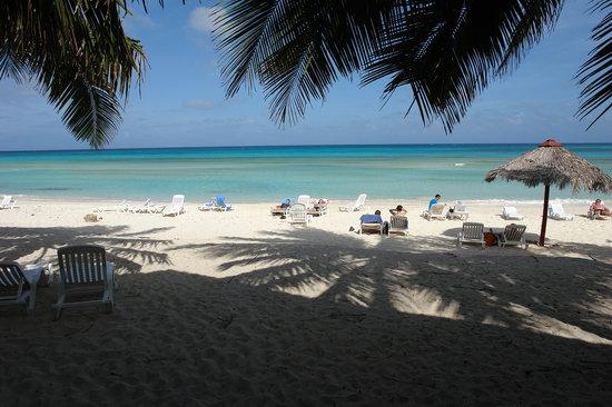 Brisas Covarrubias Hotel: View from beach bar
