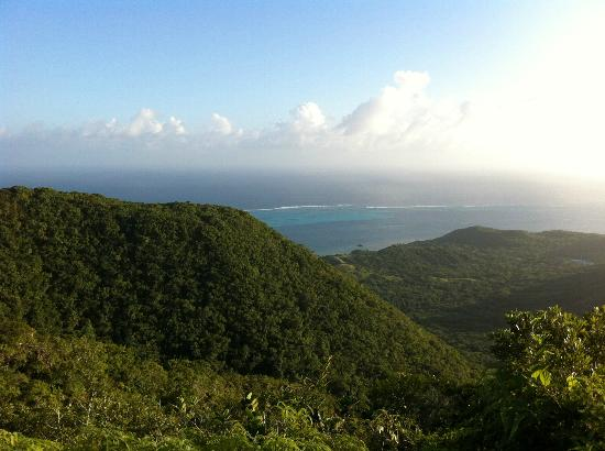 "The Peak Forestry Reserve: View the coral barrier from ""The Peak"""
