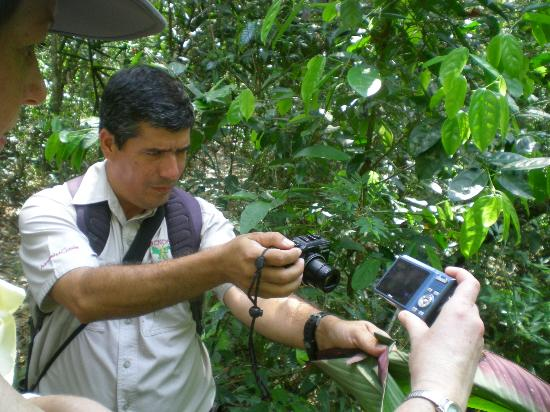 Sendero Panama Tours : Sendero Panama - Walking Tour of Pipeline Road