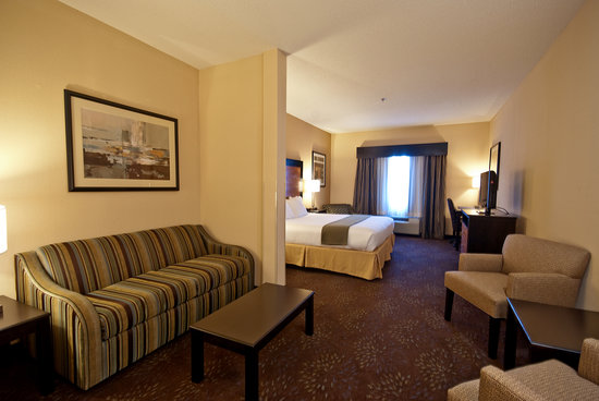 Holiday Inn Express Hotel & Suites Buford: King Room Suite