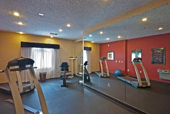 Holiday Inn Express Hotel & Suites Buford: Fitness Room