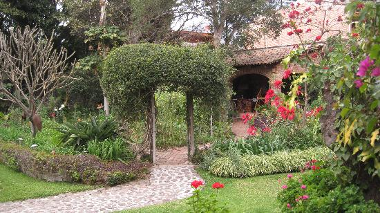 Los Artistas Bed & Breakfast: The gardens
